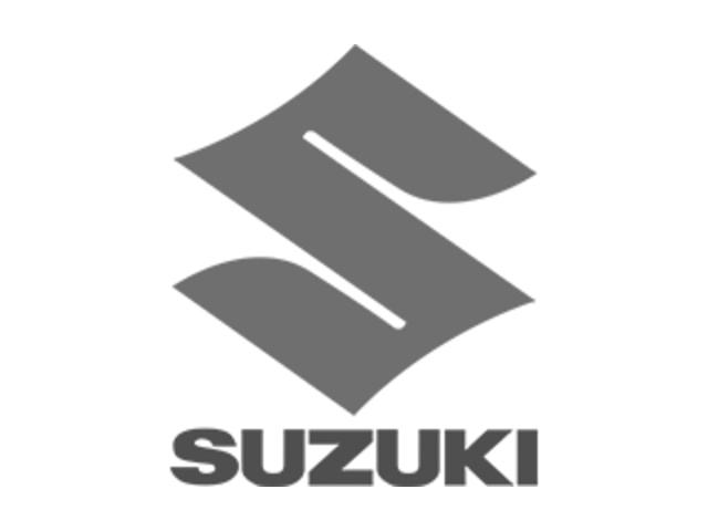 Suzuki Fastback 2008